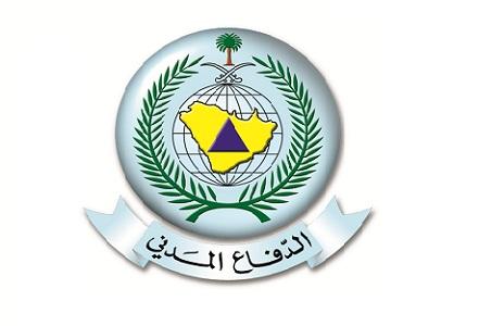 Al Madani Group LLC